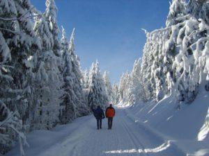 Skiläufer im Schnee